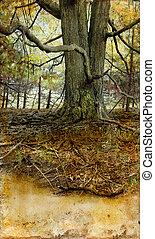 гранж, дерево, старый, задний план