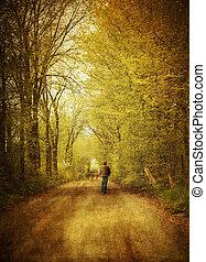 гулять пешком, одинокий, дорога, человек, страна