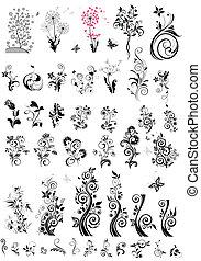 декоративный, цветочный, elements, дизайн, (