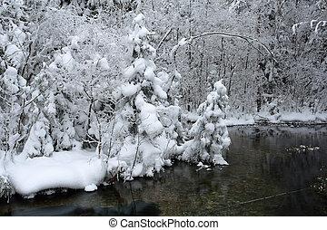 декорации, морозный, день, зима