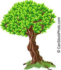 дерево, иллюстрация