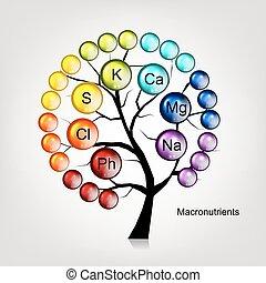 дизайн, концепция, дерево, vitamins, ваш
