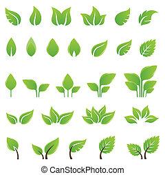 дизайн, leaves, задавать, зеленый, elements
