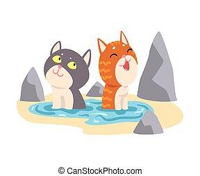 домашнее животное, на открытом воздухе, японский, ванна, enjoying, animals, пара, спа, вектор, иллюстрация, процедура, принятие, cats, горячий, милый, весна