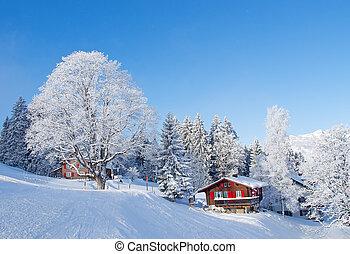 дом, день отдыха, зима