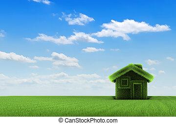 дом, поле