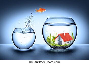 дом, рыба, реальный, найти, -, имущество