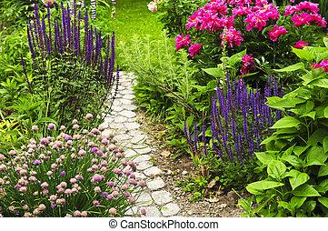 дорожка, сад, blooming