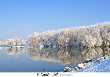 дунай, зима, мороз, trees, covered, река