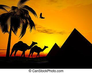 египет, закат солнца, пустыня