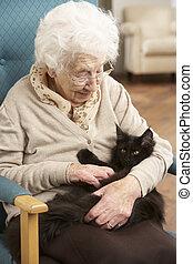женщина, relaxing, домашнее животное, кот, главная, старшая, стул