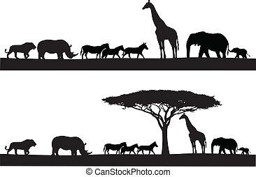 животное, сафари, силуэт