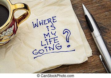 жизнь, мой, где, собирается