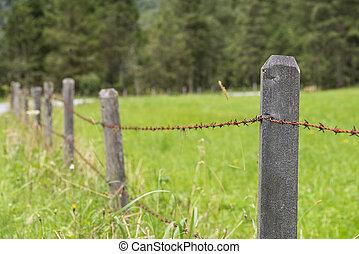 забор, провод, луг, колючий, старый