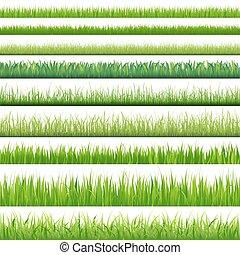 задавать, большой, grasses