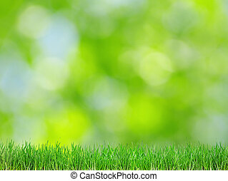 задний план, зеленый