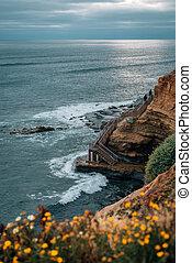 закат солнца, диего, цветы, натуральный, парк, cliffs, лестница, калифорния, точка, loma, сан -