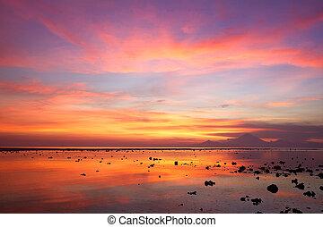закат солнца, коралловый, пляж