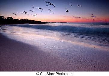 закат солнца, красота