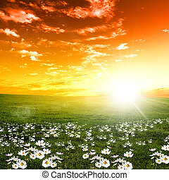 закат солнца, пейзаж, природа