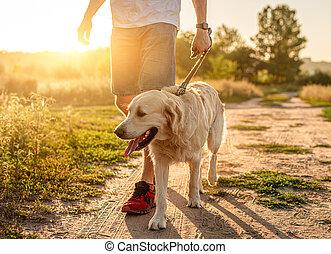 закат солнца, человек, гулять пешком, собака