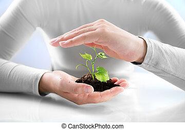 защита, сельское хозяйство