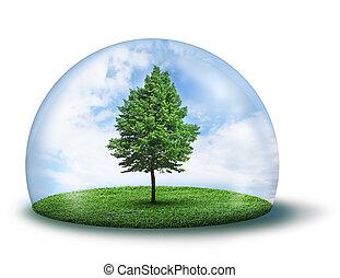 защитный, дерево, одинокий, купол, зеленый, под