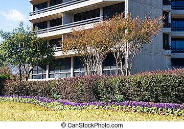 здание, имущество, landscaped, офис, вокруг