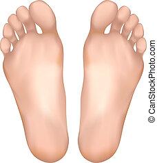 здоровый, feet.
