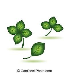 зеленый, вектор, задавать, leaf.