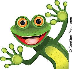 зеленый, веселый, лягушка