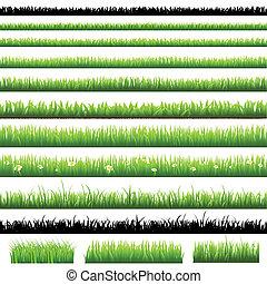 зеленый, задавать, трава