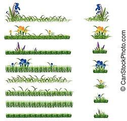 зеленый, задавать, цветы, трава