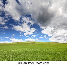 зеленый, трава, небо, холм, под