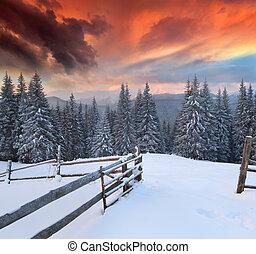 зима, красочный, драматичный, пейзаж, mountains., восход