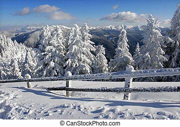зима, пейзаж