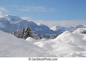 зима, снег, trees, австриец, covered, пейзаж