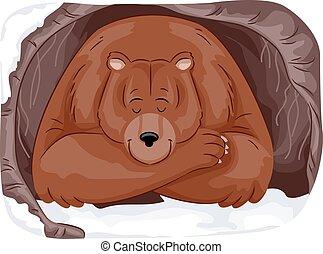 зимовать, медведь, гризли