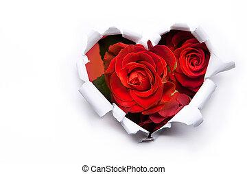 изобразительное искусство, букет, валентин, roses, бумага, hearts, день, красный