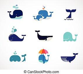 кит, вектор, коллекция, icons