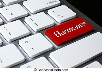 клавиатура, кнопка, войти, hormones, белый, красный