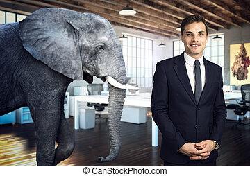 комната, слон