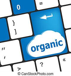 компьютер, клавиатура, слово, кнопка, ключ, органический