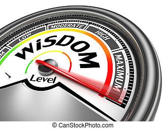 концептуальный, мудрость, метр, уровень