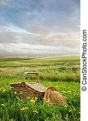 корзина, высокий, трава, пикник, шапка