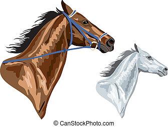 коричневый, лошадь, heads, -, два, eps, версия, уздечка, white., удален, можно