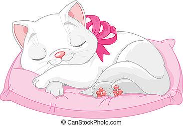 кот, милый, белый