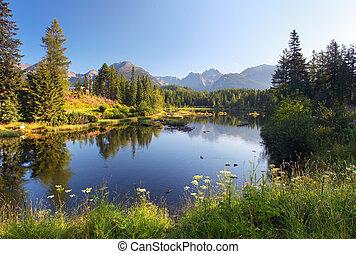 красивая, гора, природа, pleso, -, место действия, озеро, словакия, tatra, strbske