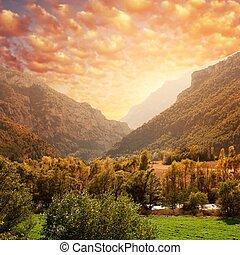 красивая, гора, sky., против, лес, пейзаж