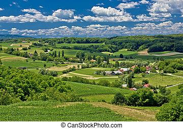 красивая, декорации, весна, зеленый, время, пейзаж